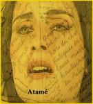 journée de la femme, 8 mars 2012, le féminisme, la parité, l'inégalité des sexes, le deuxième sexe, la mère, Satprem, Mariane et Revolta, Amina, lejournaldepersonne